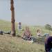 映画「ミッドサマー」のフル動画をdailymotionやpandoraで無料視聴